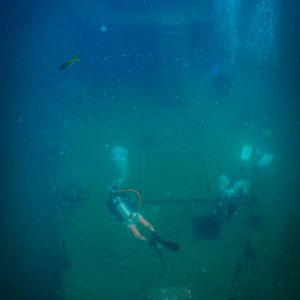 islatortugadivers.com koh tao cursos buceo en español barco sattakut featured