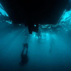 isla-tortuga-divers-koh-tao-buceo-profundo-(-deep-spec)