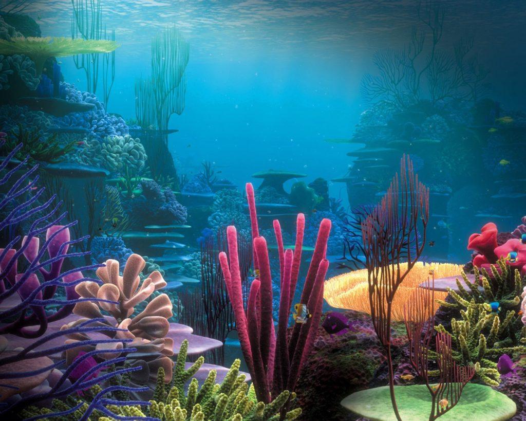 Isla-Tortuga-vida-marina-blog