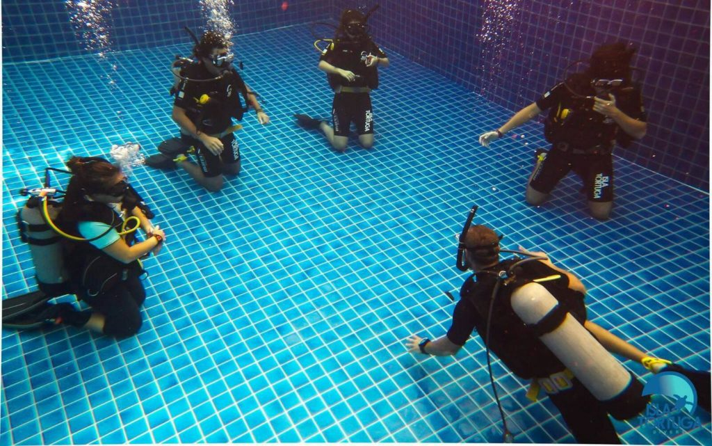 islatortugadivers.com-isla-tortuga-divers-koh-tao-cursos-buceo-español-vista-escuela-javi-piscina-ow