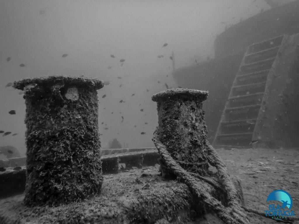 islatortugadivers.com-isla-tortuga-divers-koh-tao-cursos-buceo-español-vista-escuela-javi-piscina-chumphon-burbujas-barco-hundido-sattakut
