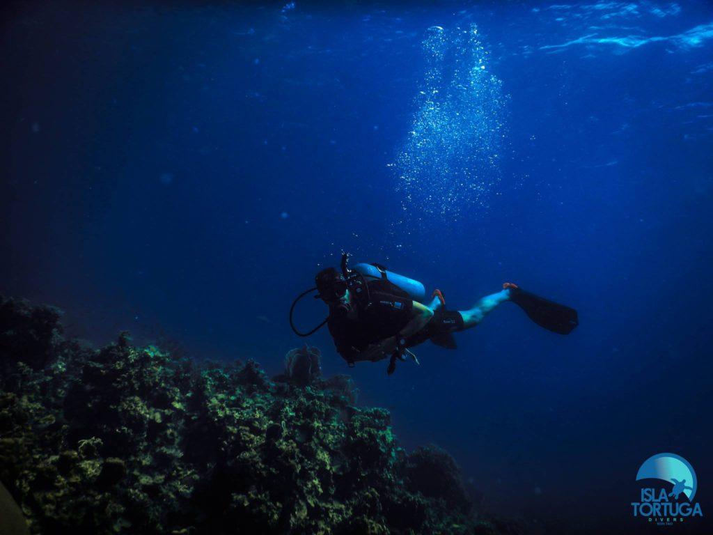 isla-tortuga-divers-koh-tao-mochileros-tailandia-buceo-diving-cursos-buceo-español-islatortugadivers.com