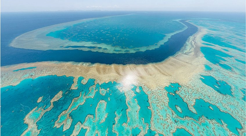 islatortugadivers.com-isla-tortuga-divers-koh-tao-cursos-en-español-corales-bonitos-mundo-muriendo-house-reef