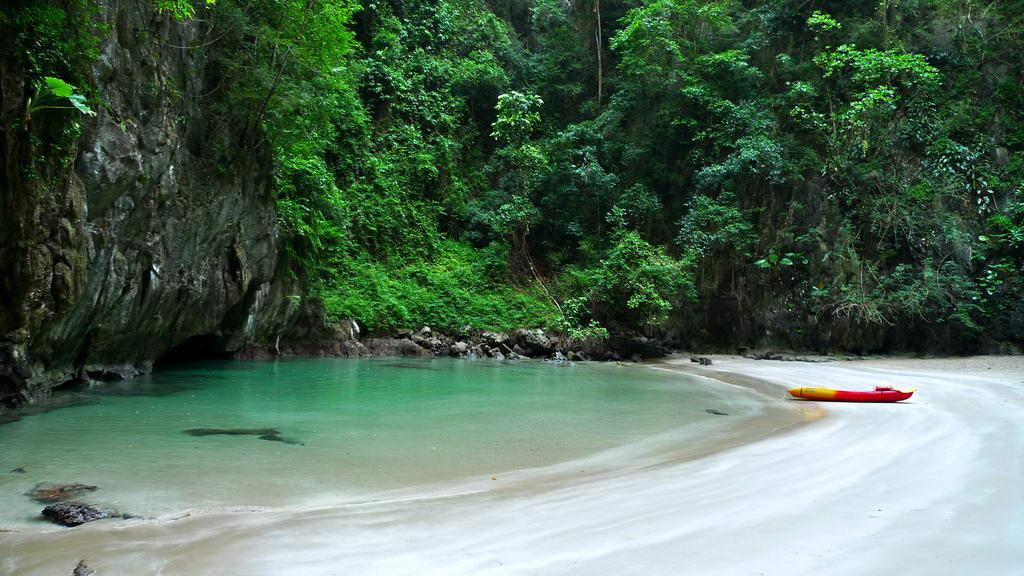 islatortugadivers.com koh tao cursos bueco tailandia padi 10 sitios en tailandia Imagen 8